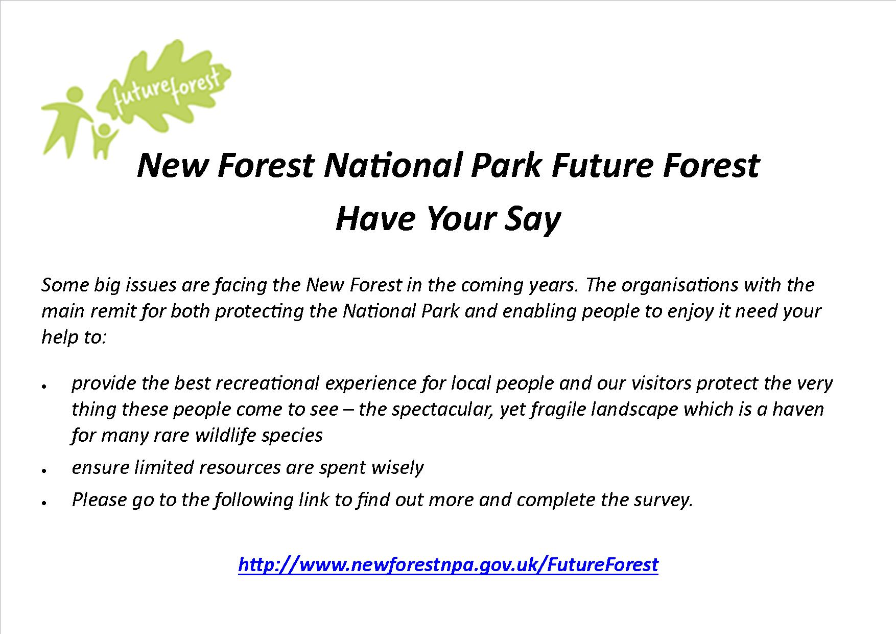New Forest Survey